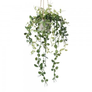 Fern Button Hanging Pot