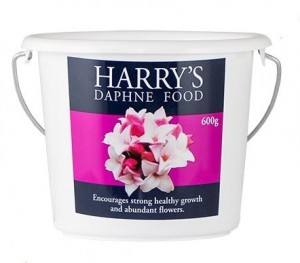 Harry's Daphne Food 600g