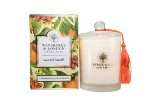 Candle Persimmon + Red Currant