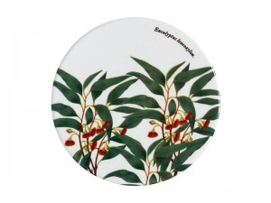Flowering Gum - Coaster