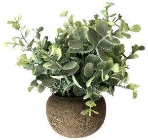 Eucalypt Bunch In Natural Round Pot